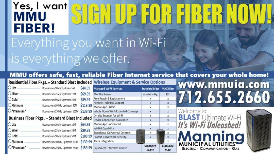 Fiber information 2020